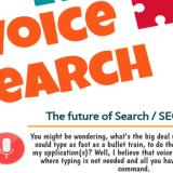 Voice search the future of seo