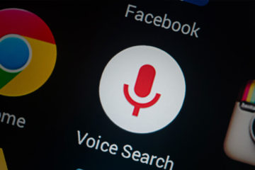 Voice Search : The Future of Search/SEO ( Infographic )