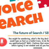 Voice search the future of seo